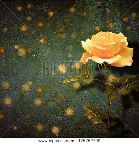 Beautiful Yellow Rose With Green Leaves On Background