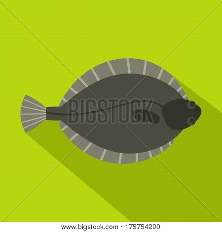 Flounder fish icon. Flat illustration of flounder fish vector icon for web isolated on lime background