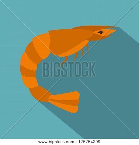 Orange shrimp icon. Flat illustration of orange shrimp vector icon for web isolated on baby blue background