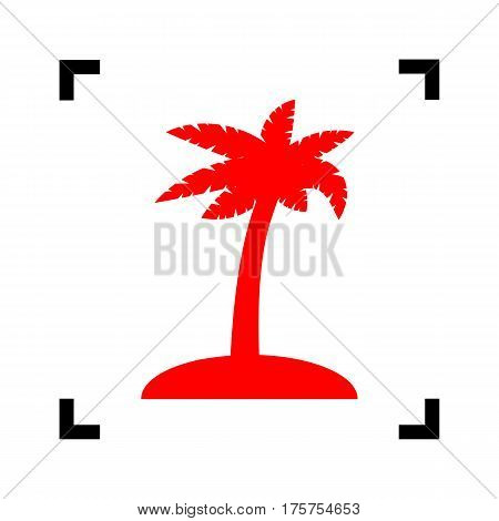 Coconut palm tree sign. Vector. Red icon inside black focus corners on white background. Isolated.
