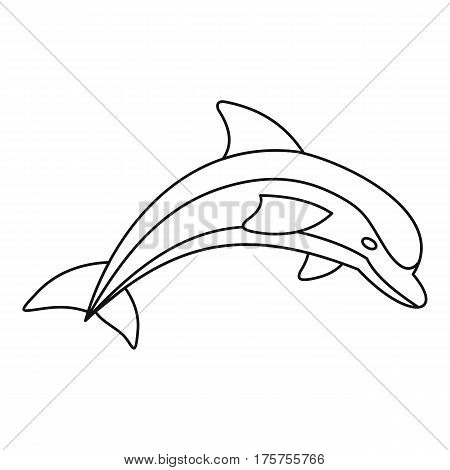 Dolphin icon. Outline illustration of dolphin vector icon for web