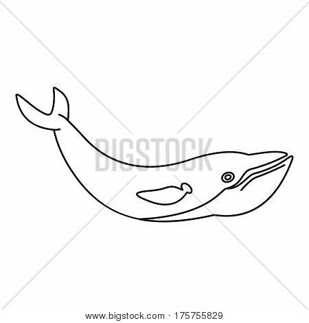 Whale fish icon. Outline illustration of whale fish vector icon for web