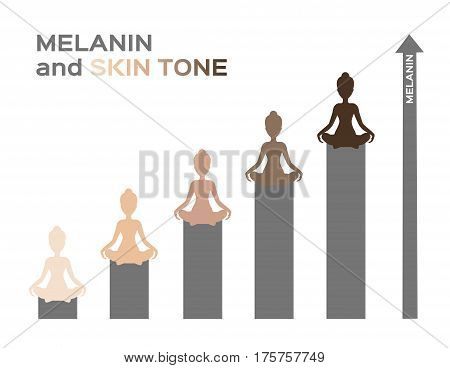 melanin and skin tone infographic vector .