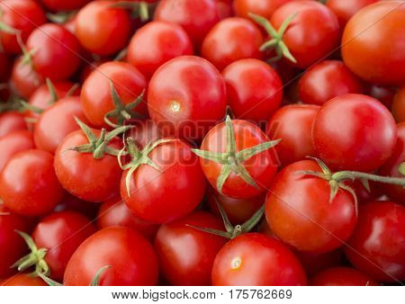 Delicious red tomatoes. A pile of tomatoes. Summer tray market agriculture farm full of organic tomatoes. Fresh tomatoes. It can be used as background. (selective focus)