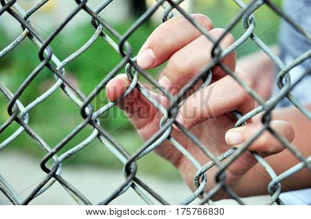 the man's fingers clasp metal wire fence.female hand