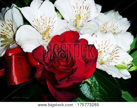 Alstroemeria red rose flower floral bouquet composition photo