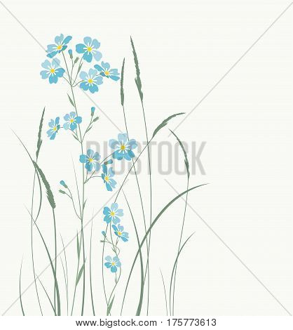Vector illustration blue flowers. Grass with blue forget-me-not flowers