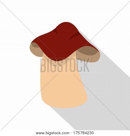 Boletus icon. Flat illustration of boletus vector icon for web