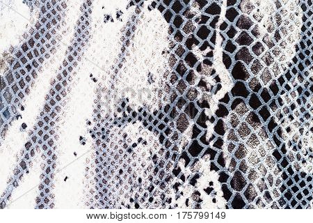 Texture of genuine leather close-up, embossed under the skin a reptile. For background , backdrop, substrate, composition use. With place for your text