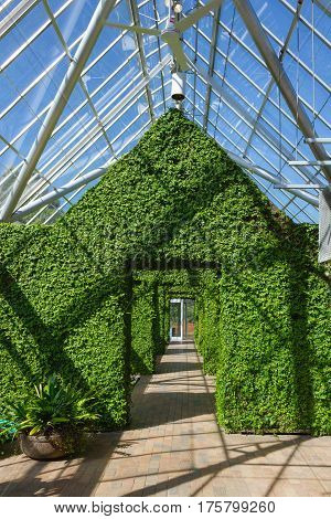 MINNEAPOLIS USA - APRIL 11 2012: Greenhouse at the Minneapolis Sculpture Garden