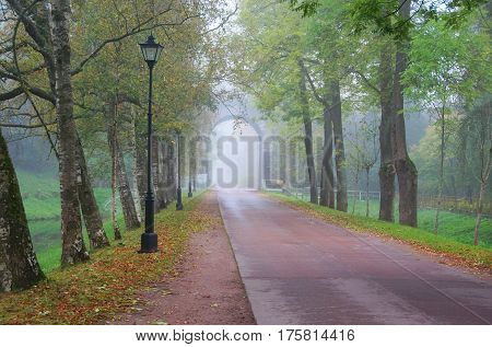 A great whim and a misty autumn morning in the Alexander Park