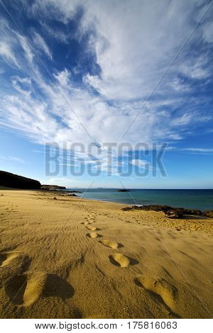 Footstep In Lanzarote   Spain  Rock Coastline And Summer