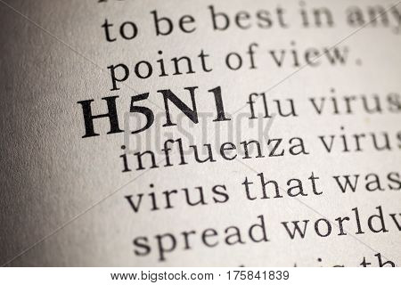 Fake Dictionary Dictionary definition of the word H5N1 flu.