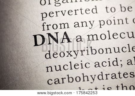 Fake Dictionary Dictionary definition of the DNA.
