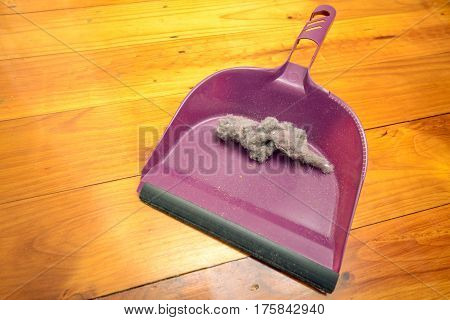 Dustpan with ball of dust on floor in room inside house