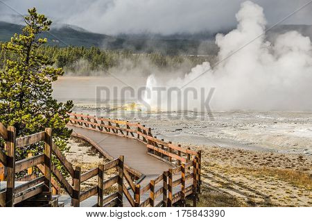 Spasm Geyser put on quite a show with a wall of steam and eruptions of varying heights with lots of droplets of water. Look for