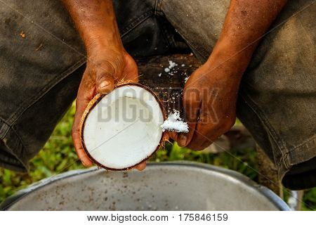 Close-up of man's hands scraping coconuts in Lavena village Taveuni Island Fiji. Taveuni is the third largest island in Fiji.