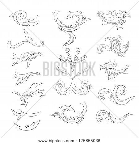 Graphic sketch of flower components on white background.
