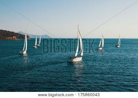Luxury yachts at Sailing regatta at the Sea.
