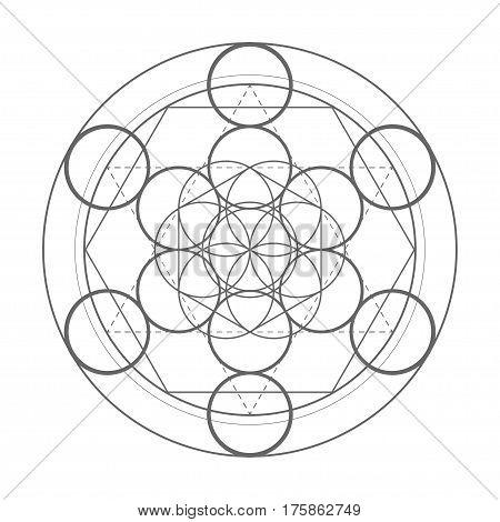 sacred geometry symbol. Metatrons cube vector illustration shape