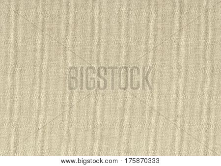 a light beige pure artists canvas background