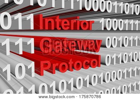 Interior Gateway Protocol is presented in the form of binary code 3d illustration