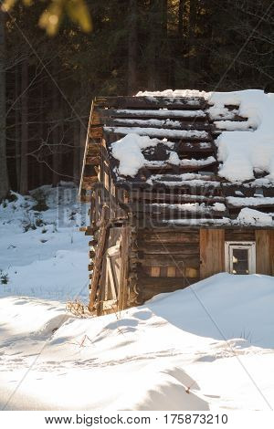 A smal and oldl wooden house in a snowy forest