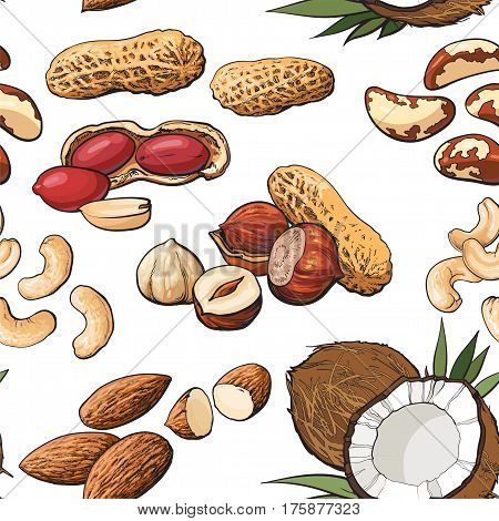 Seamless pattern of coconut, cashew, peanut, hazelnut, almond, Brazil nuts on white background, sketch style vector illustration. Mixed nuts seamless pattern, background, backdrop design