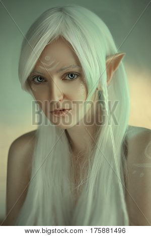 Beauty Portrait Of Girl In Fantasy Image Of An Elf. White Hair And Faceart. Long Elven Ears. Fairy T