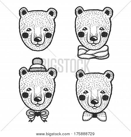 Hand drawn cartoon bear head prints set. Cute hand crafted design elements for apparel prints, posters, wall decor. Vector vintage illustration.