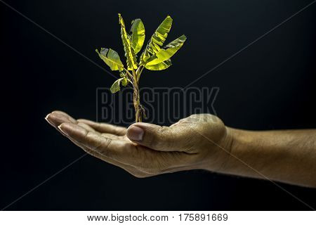 Hand Open For Holding Or Giving Concept Dark Style