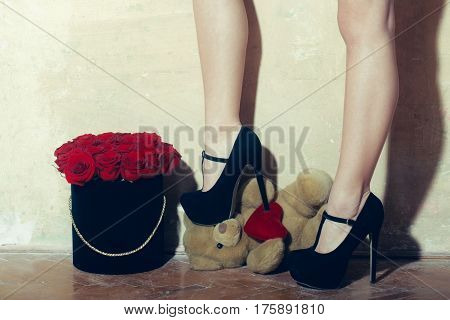 Sexy Female Legs, Beautiful Red Roses In Box And Bear