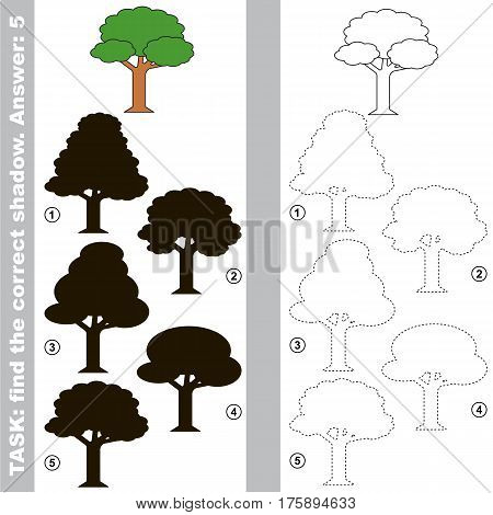 Leaf Tree with different shadows to find the correct one, compare and connect object with it true shadow, the educational kid game with simple level of difficulty.