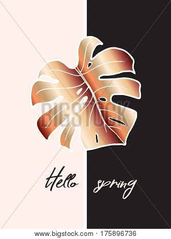 Design of poster for the interior. Hello spring. The decoration of the house. Trendy a bronze leaf of monstera on pink blush and black background. Vector. Suitable for covers, cards, brochures.