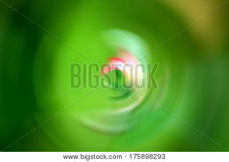 Abstract green bokeh nature and blurred background