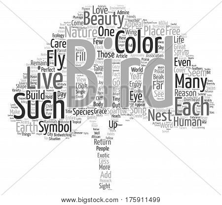 A Few Words In Praise of Birds text background word cloud concept