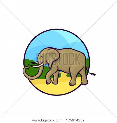 Animal Art, Cute Cartoon Style