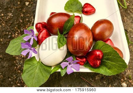 Plastic salver with Easter eggs and chocolate hearts,bouquet of periwinkle