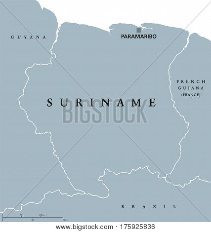 Suriname political map with capital Paramaribo, national borders and neighbors. Also Surinam, a republic and country in South America.  Gray illustration white background. English labeling. Vector.