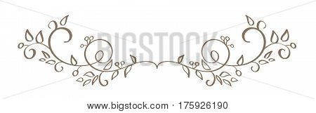 art calligraphy of vintage decorative whorls for design. Vector illustration EPS10.