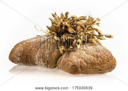 Oat bunch and baked bread isolated on white background. Grain bouquet. Golden oats spikelets. Food bakery concept