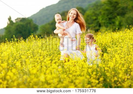 Happy family of mother and children run in the meadow of yellow flowers in summer on nature