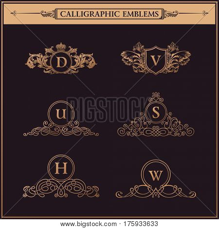 Luxury logo monogram. Vintage royal flourishes elements. Calligraphic symbol ornament. Letters in frame D, V, U, S, H, W. Design luxury set. raster pattern flourishes emblem