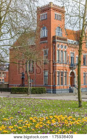 Red brick building and crocusses in Groningen The Netherlands
