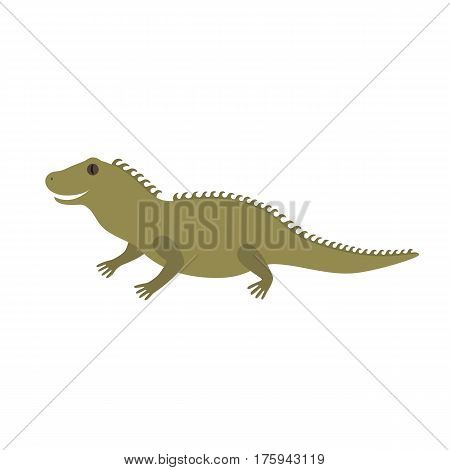 Tuatara of New Zealand vector illustration for children isolated on white background