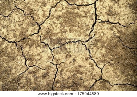 Top view of cracked dry land background