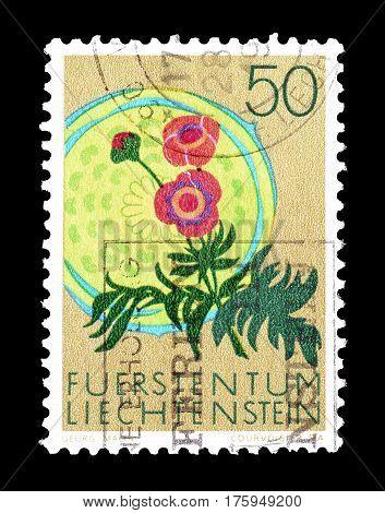 LIECHTENSTEIN - CIRCA 1971 :  Cancelled postage stamp printed by Liechtenstein, that shows Glacier crowfoot.