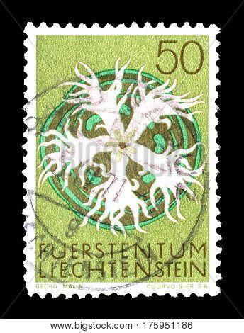 LIECHTENSTEIN - CIRCA 1971 :  Cancelled postage stamp printed by Liechtenstein, that shows Large pink.