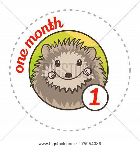 Monthly Baby Sticker