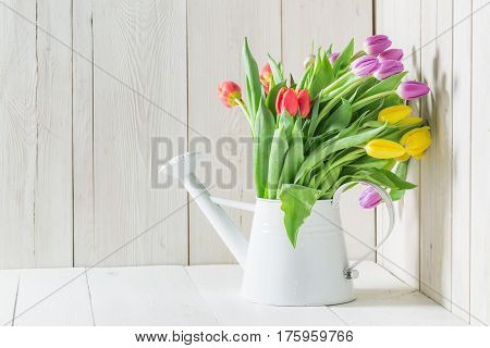 A Colourful And Young Tulip On A White Table
